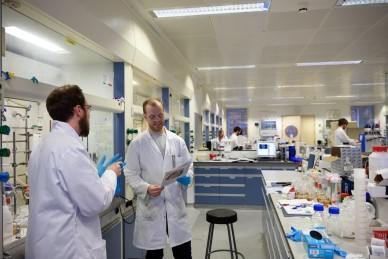 The labs
